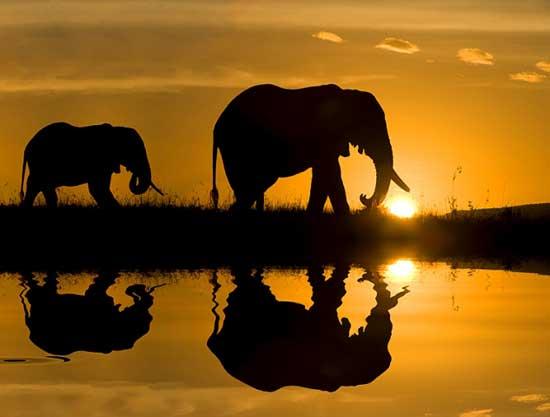 África do Sul com Pilanesberg